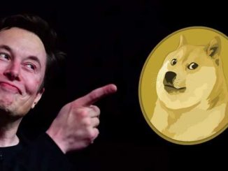 Elon Musk with Dogecoin: buy Dogecoin in India
