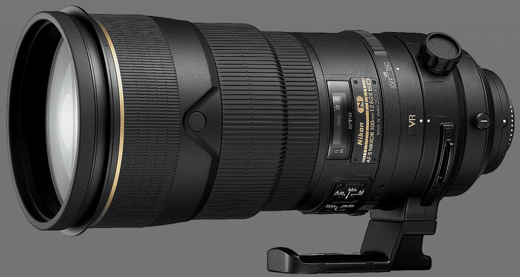 What Size Camera Lens Do I Need: Telephoto Lens