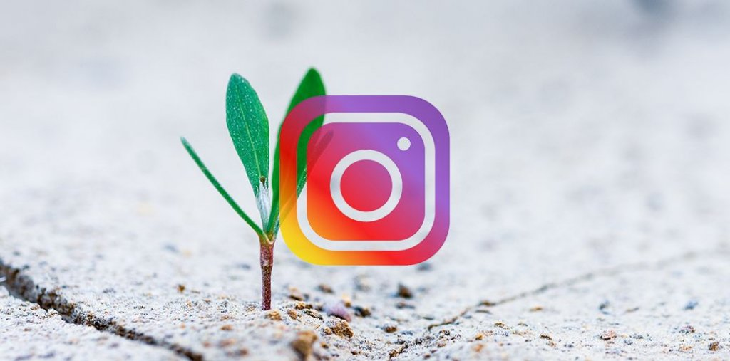 Offer Services: How to Make Money on Instagram with 500 Followers?