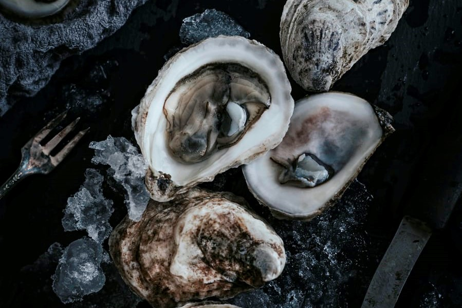 Oysters: Food That Looks Gross But Tastes Good