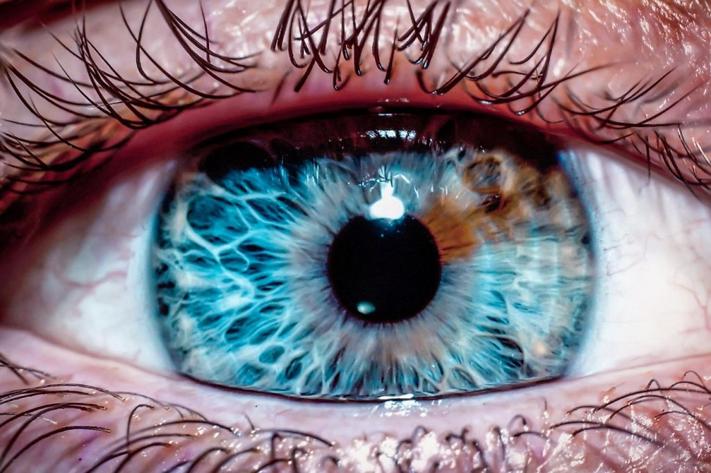 Deep blue Eyes; 11 Facts About Blue Eyes That Will Stun You